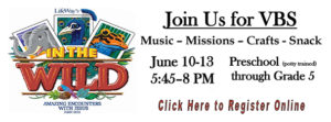 Join Us for VBS - In the Wild
